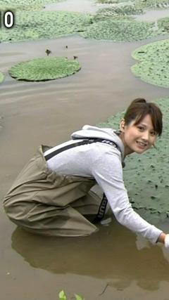 小正裕佳子の画像 p1_6